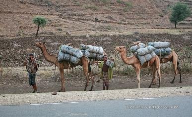 ethiopia8