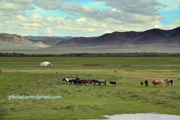 mongolia2.1