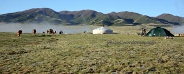 mongoliafotog15