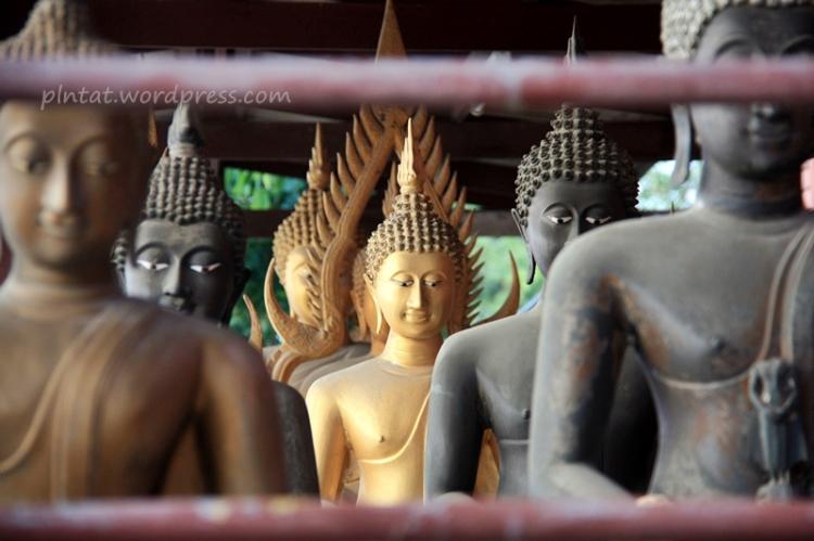 thailandia2013.5