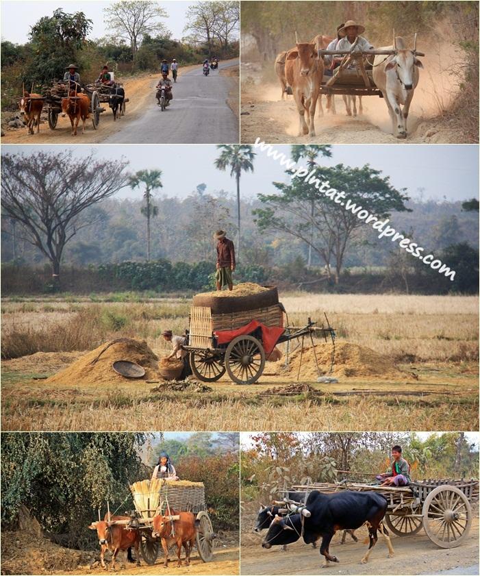 carretera Myanmar carros.